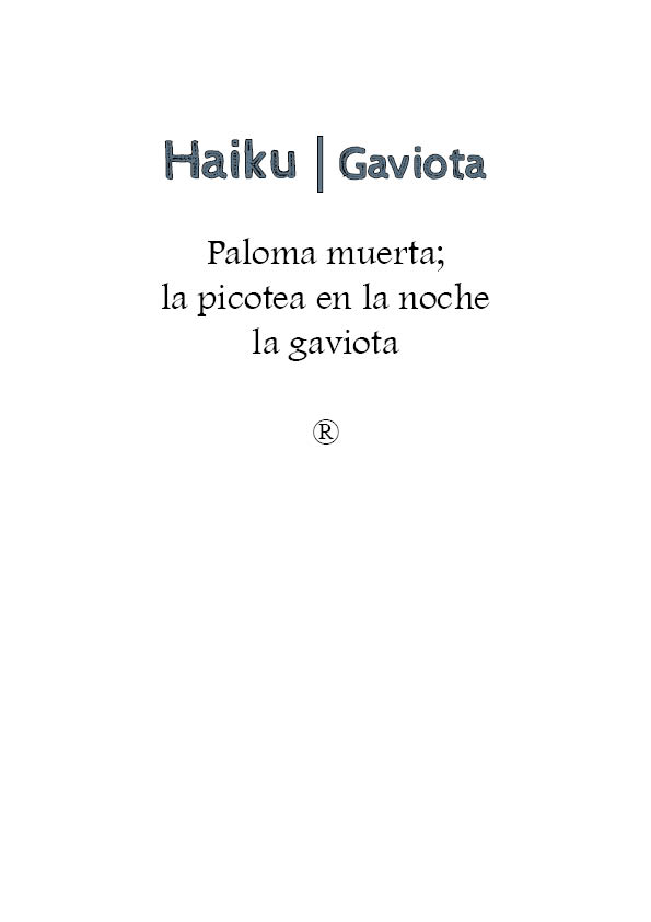 haiku- gaviota - copia